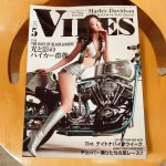 VIBES-2014-04-1